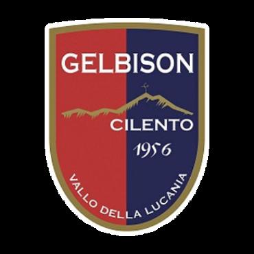 Conosciamoli meglio: Gelbison, la locomotiva del gol del girone H