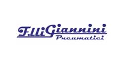 Fratelli Giannini Pneumatici